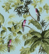 tropical-birds-421605