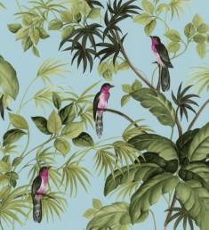 tropical-birds-421605